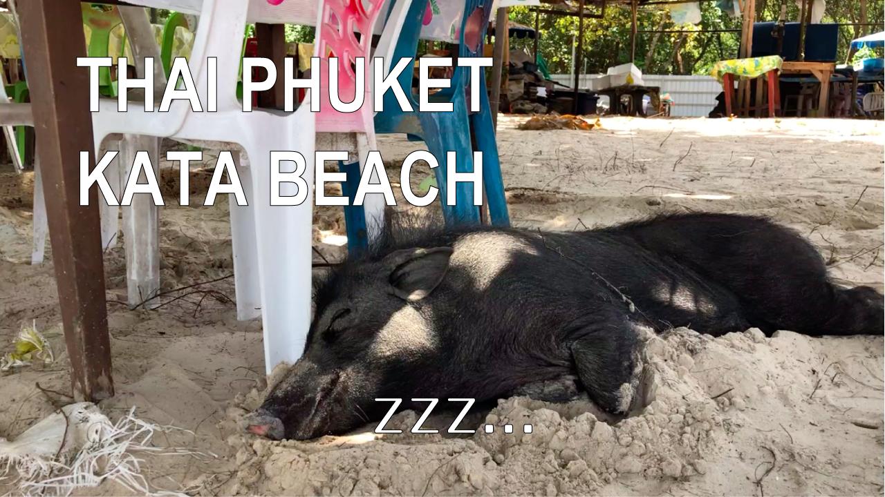 タイ プーケット旅行 カタビーチ